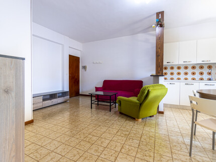 apartment Albertina 3,  Living room entrance view.