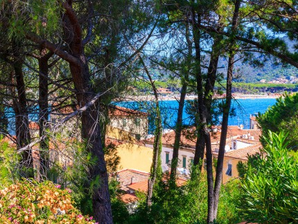 Salita ulivi, holiday accomodation on Elba Island, seaview